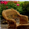 Being Your Own Therapist - Wicker Chair